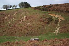 Spring well and rabbit warrens below Hergest Ridge - geograph.org.uk - 163034.jpg