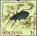 Stamps of Moldova, 021-09.jpg