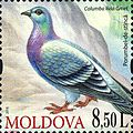 Stamps of Moldova, 2010-19.jpg