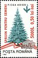 Stamps of Romania, 2005-039.jpg