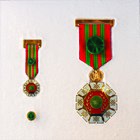 Star of Freedom of the Order of the State of Palestine.jpg
