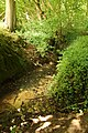 Steenbergse bossen 22.jpg