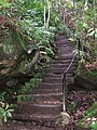 Steps to Hunting Tower - geograph.org.uk - 648135.jpg