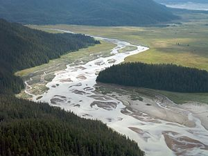 Stikine River - Braided channels of the Stikine River near Little Dry Island