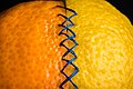 Stitched Vitamins - Flickr - ElleFlorio.jpg