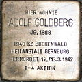 Adolf Goldberg