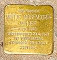 Stolpersteine Gouda Blekerssingel51 (detail 2).jpg