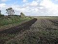 Stubble field at Sunnyside - geograph.org.uk - 1558759.jpg
