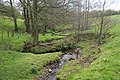 Stydd Brook.jpg