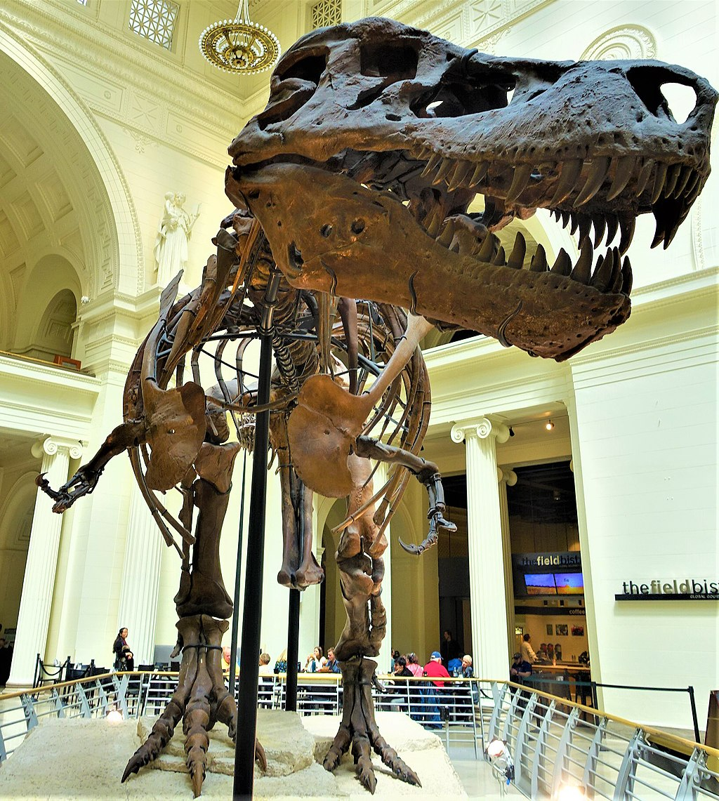 Sue - Tyrannosaurus Rex Dinosaur - Field Museum of Natural History, Chicago