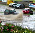 Summer in Cornwall 2 (2787766398).jpg