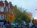 Sutton High Street trees (1).jpg