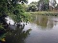 Svislač river in southeastern Minsk - 09.jpg