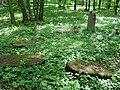 Třebotovský židovský hřbitov, ležící náhrobky.jpg