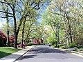 Tara - Leeway Heights, Arlington, VA 22205, USA - panoramio.jpg