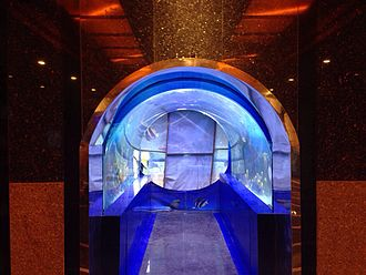 Taraporewala Aquarium - Inside View