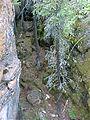 The Limestone Crevasses, Denare SK 20010716.jpg