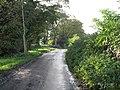 The Road To Husthwaite - geograph.org.uk - 266605.jpg