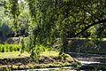 The Tauride Garden - panoramio (3).jpg