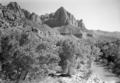 The Watchman and the Virgin River. ; ZION Museum and Archives Image 9201 ; ZION 9201 (f5425214c7cd4e36be49a7c8f62fec2b).tif