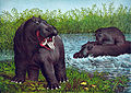The hippopotamus, 1874.jpg