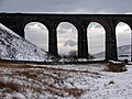 The south-east arches of Ribblehead Viaduct - geograph.org.uk - 1151393.jpg