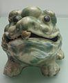 Three-legged toad IMG 4996.JPG