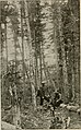 Through the wilds; a record of sport and adventure in the forests of New Hampshire and Maine (1892) (14586633610).jpg