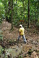 Tiga Trails.jpg