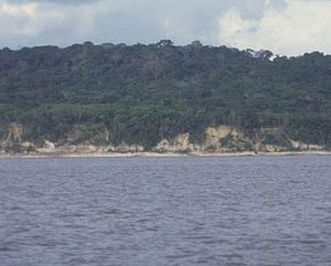 Tocantins River.jpg