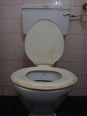Toilettes- 4.jpg