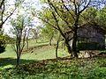 Tomašnica - Zaselak Pavlić Brdo - panoramio (2).jpg