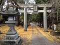 Torii and nightlight on sando of Arashiyama Taki Shrine.JPG