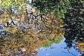 Toronto - High Park (6569745031).jpg