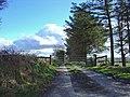 Track to Blaen-bi-newydd, Cynwyl Elfed - geograph.org.uk - 1184440.jpg