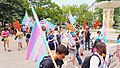 Trans Solidarity Rally and March 55441 (17609811909).jpg