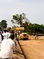 Tree, species unidentified, being felled in Ouagadougou, Burkina Faso, 2009.jpg