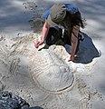 Trilobite in the sand 1 (31848254487).jpg