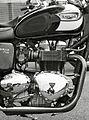 Triumph Bonneville T100 - Flickr - exfordy.jpg
