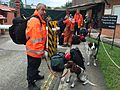 UK search and rescue team in Nepal (17091968607).jpg