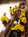 UMNLaw-HamlineLaw-hockey.jpg