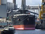 UNIVERSAL ACE, Wood Chips Carrier - IMO 9272979.jpg