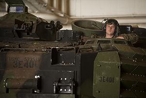 US Navy 111211-N-PB383-816 A Marine waits in an amphibious assault vehicle in the well deck.jpg