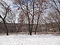 Ufa, Republic of Bashkortostan, Russia - panoramio (339).jpg