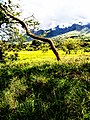 Ulugulu mountains.jpg
