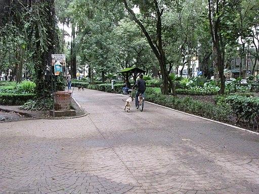 best Mexico City hostels la colonia Condesa México