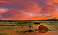 Under an African Sky - panoramio.jpg