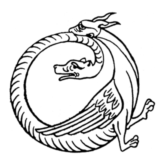 Amphisbaena - Amphisbaena