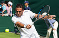 Víctor Estrella Burgos 1, 2015 Wimbledon Championships - Diliff.jpg