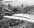 VA002930 Spraying Agent Orange in Mekong Delta near Can Tho.jpg